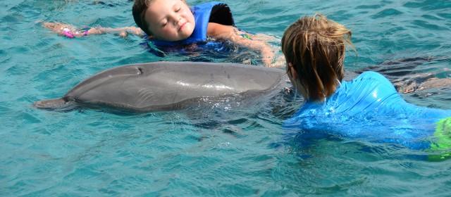 Bij de dolfijnen!!!
